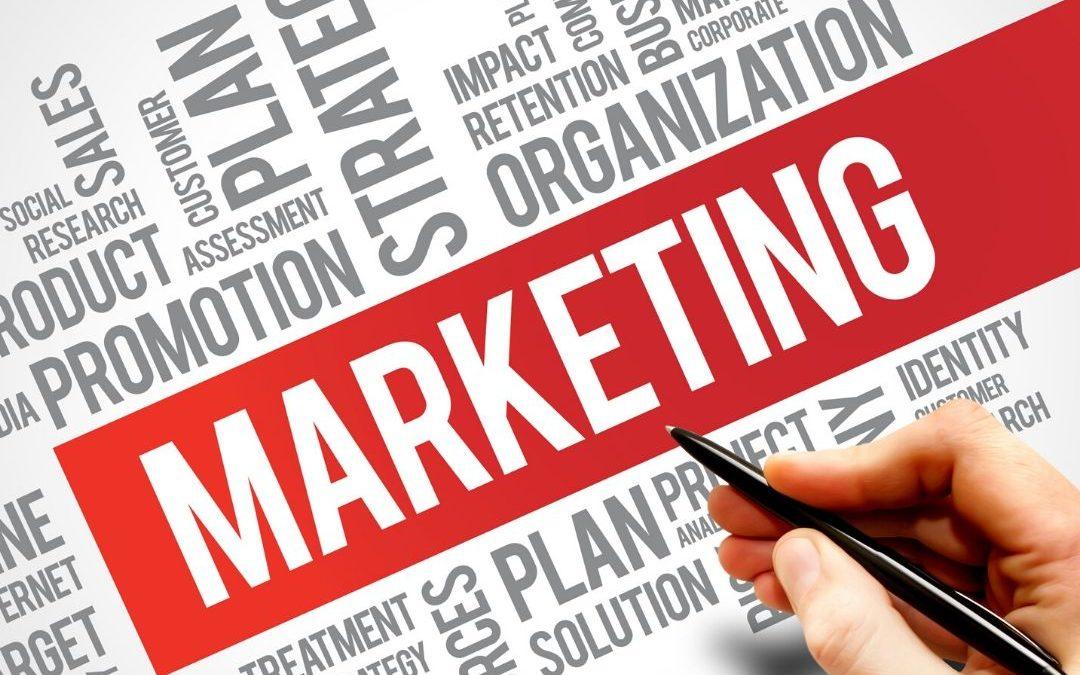 Google Digital Marketing Apprenticeship